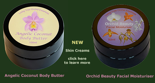 new skin living tree orchid essence skin creams